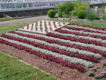 Annuals in Hartford American Gardening