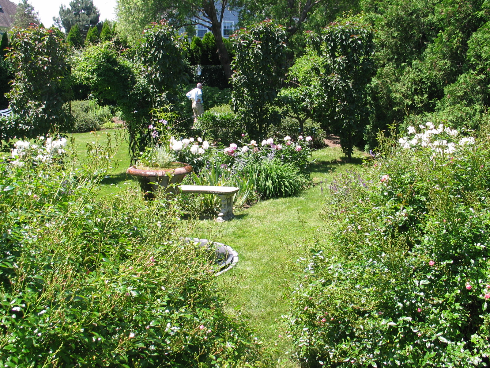 nineteenth century american writer considered english garden
